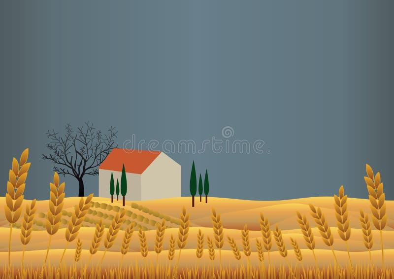Het Landschap van de tarwe stock afbeelding