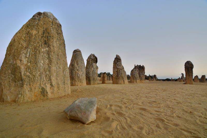 Het landschap van de toppenwoestijn Nambung Nationaal Park cervantes Westelijk Australië australië stock afbeeldingen