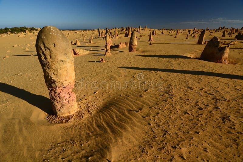 Het landschap van de toppenwoestijn Nambung Nationaal Park cervantes Westelijk Australië australië stock foto's