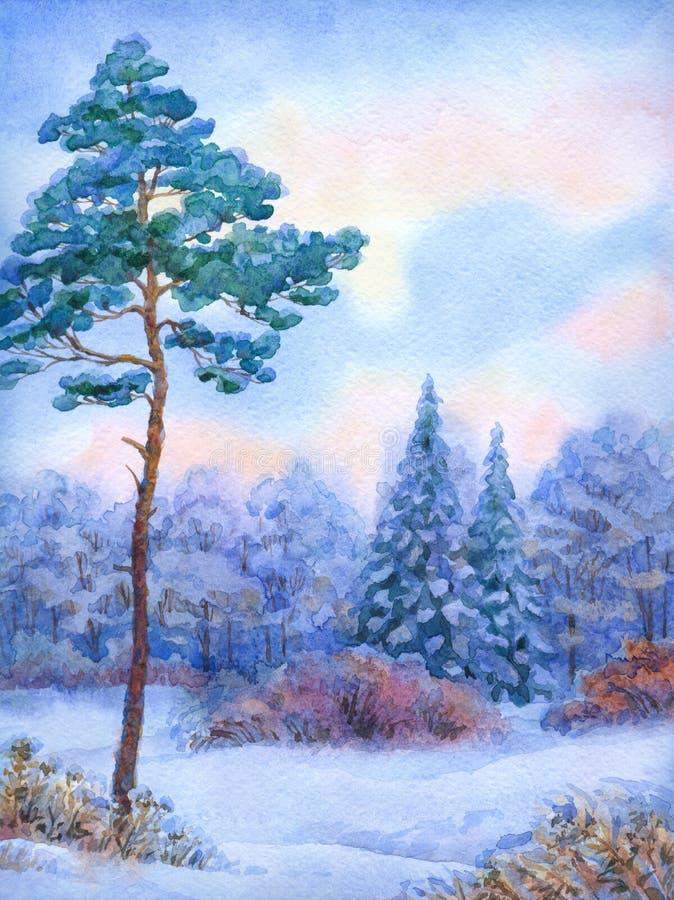 Het landschap van de waterverf De lange Boom van de Pijnboom in het Bos van de Winter royalty-vrije illustratie