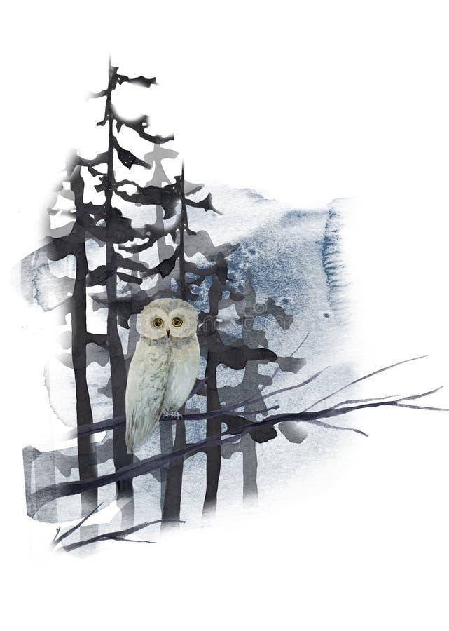 Het landschap van de waterverfwinter met uil op boom in bos stock illustratie
