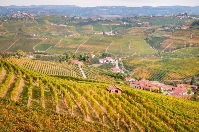 Het landschap van de de wijngaardenherfst van Langhee Roero heuvels stock afbeelding