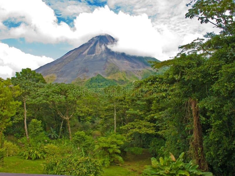 Het Landschap van de wildernis stock afbeelding