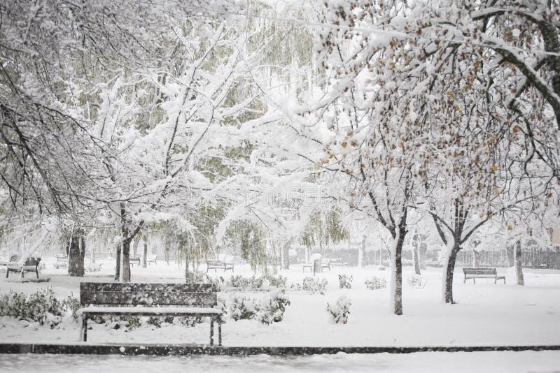 Het landschap van de winter in het park stock afbeelding