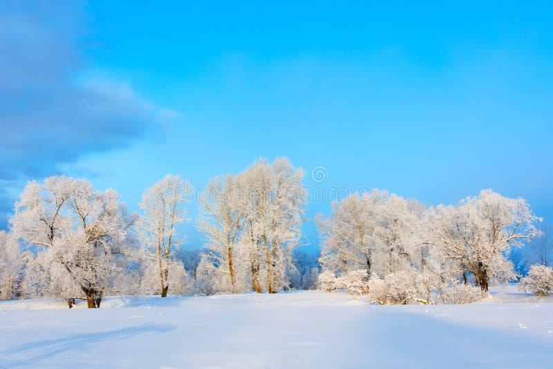 Het landschap van de winter Koude dag stock foto