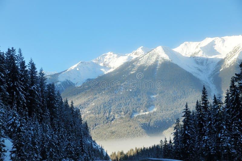 Het landschap van de winter rockies stock afbeeldingen