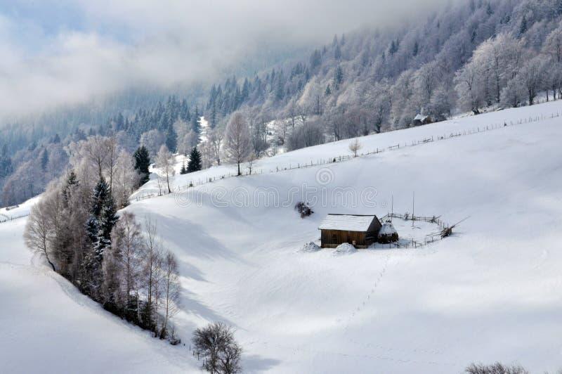 Het Landschap van de winter in Roemenië stock afbeelding