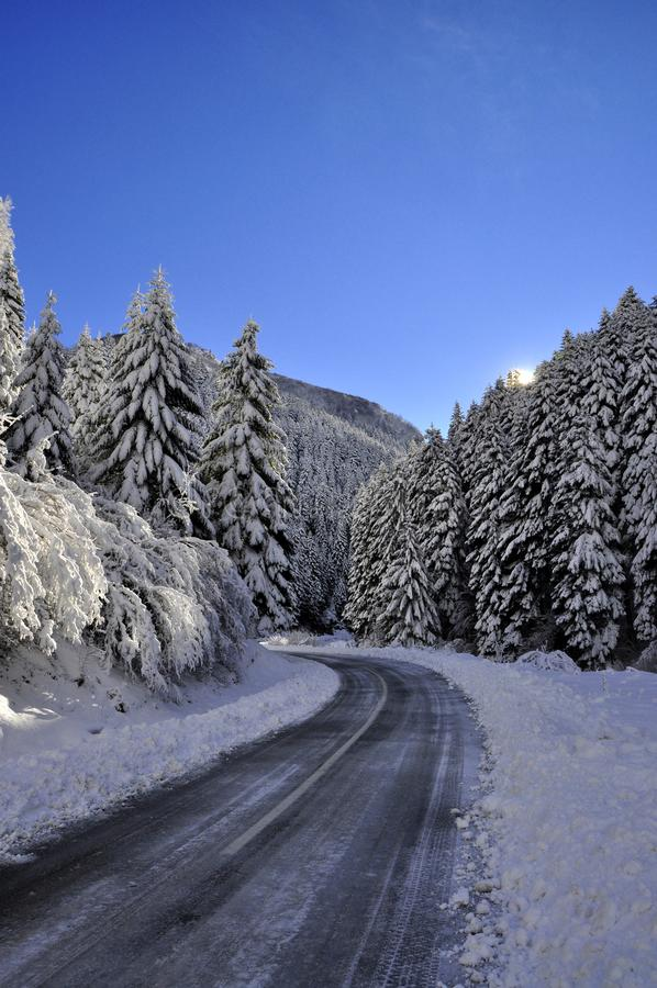 Het landschap van de winter Seizoen, vorst stock afbeeldingen