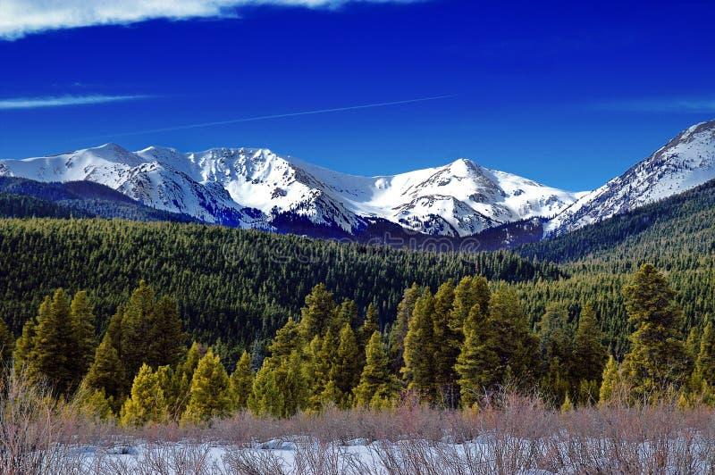 Het landschap van de Winter van Colorado stock foto