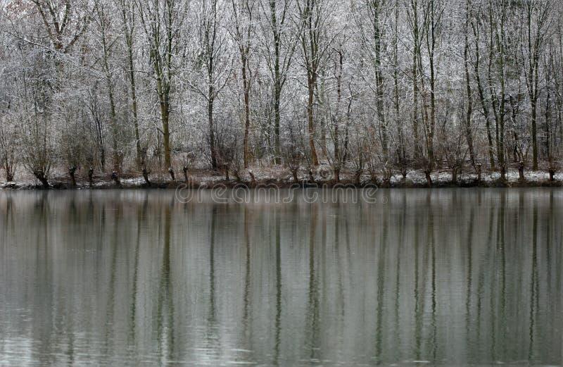 Het Landschap van de winter van Sneeuw Behandelde Bomen die in Meer nadenken royalty-vrije stock afbeeldingen