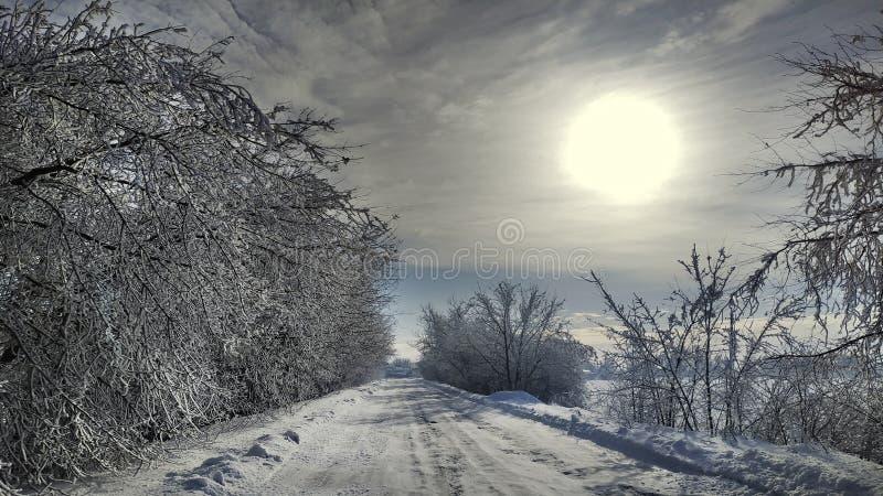 Het landschap van de winter De winterweg en bomen met sneeuw, landelijke weg wordt behandeld die stock foto's