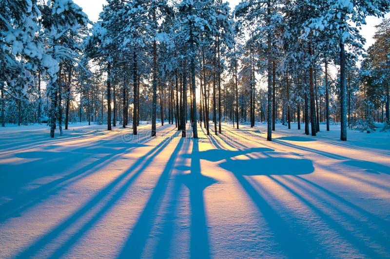 Het landschap van de winter. Zonsondergang. royalty-vrije stock foto's