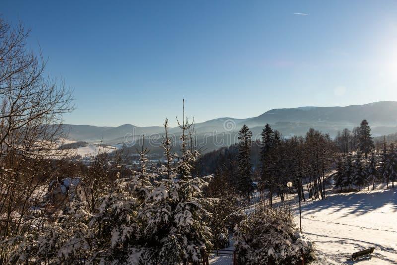 Het landschap van het de winterpanorama met bos, bomen behandelde sneeuw en zonsopgang winterly ochtend van een nieuwe dag De win stock foto