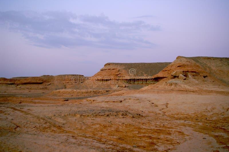 Woestijnlandschap royalty-vrije stock foto's