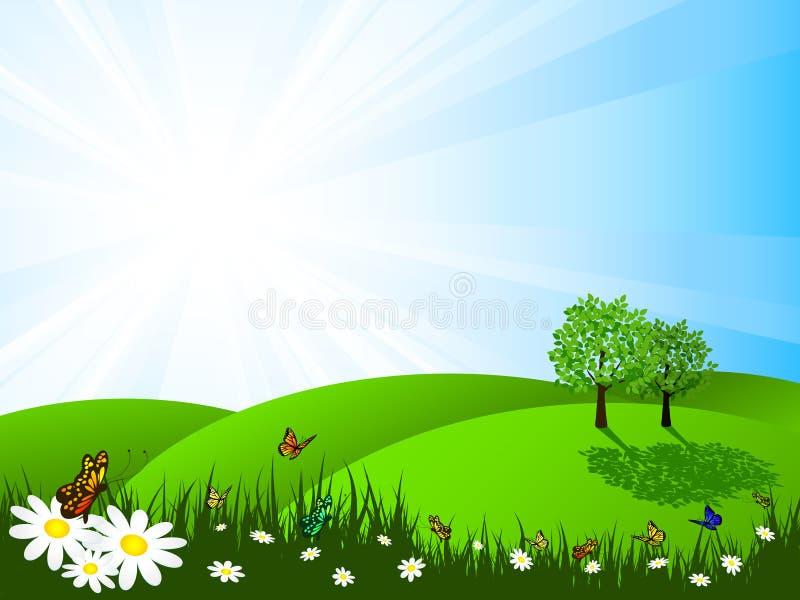Het landschap van de zomer vector illustratie