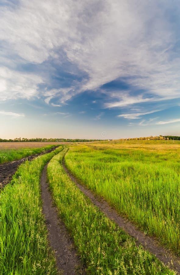 Download Het Landschap Van De Zomer Met Groen Gras Stock Foto - Afbeelding bestaande uit gras, groen: 29509838