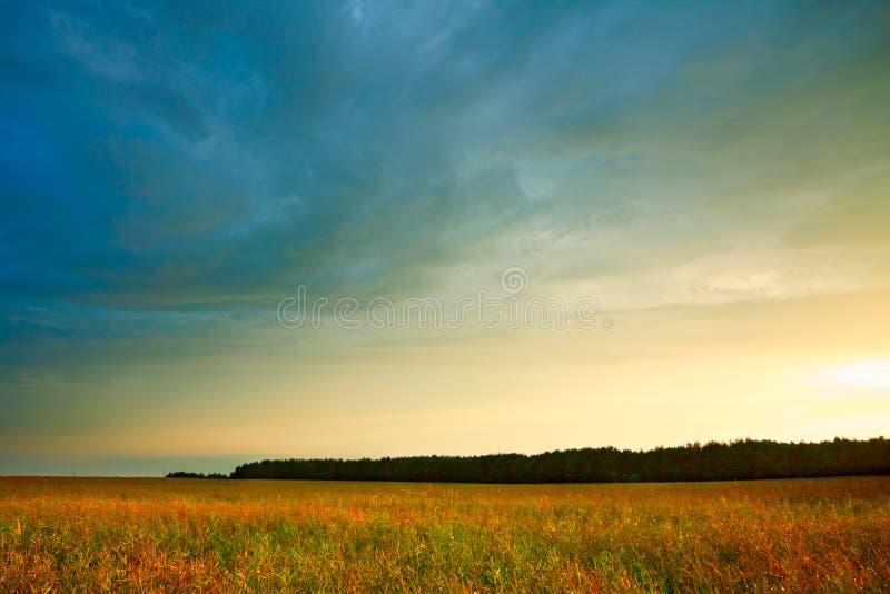 Het landschap van de zomer met hayfield royalty-vrije stock fotografie