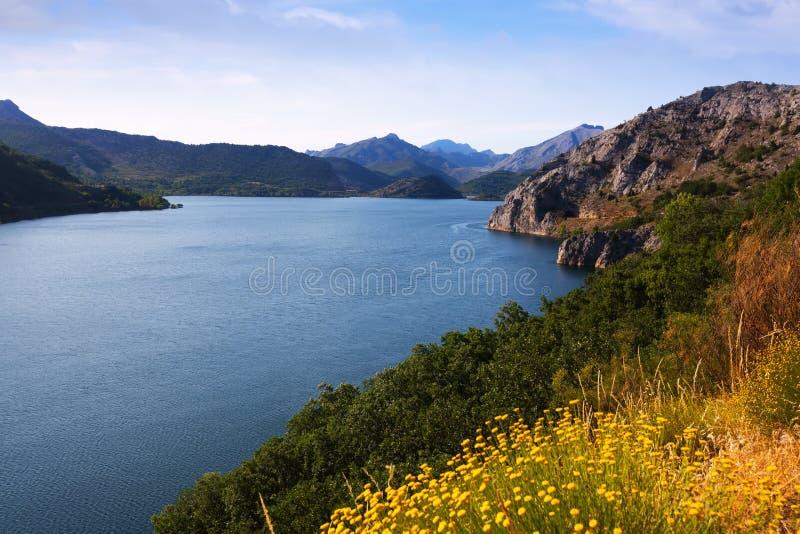 Het landschap van de zomer met meer royalty-vrije stock afbeelding