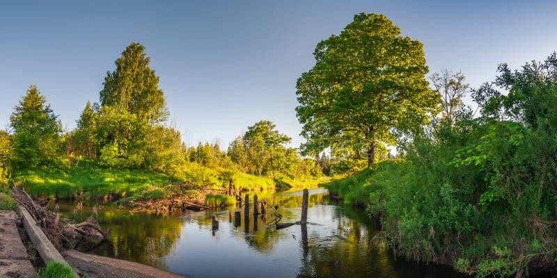 Het landschap van de de zomeravond Mening van de rivier met overwoekerde kustlijnen van de oude brug aan het licht van de het pla stock fotografie