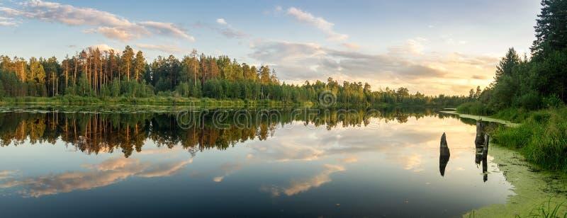 Het landschap van de de zomeravond op Ural-meer met pijnboombomen op de kust, Rusland royalty-vrije stock foto's