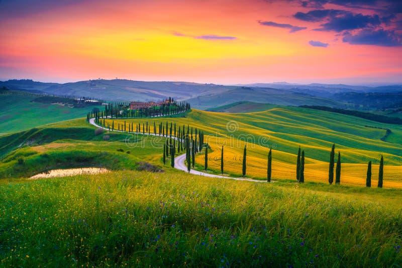 Het landschap van de zomertoscanië bij zonsondergang met gebogen landelijke weg, Italië stock afbeelding