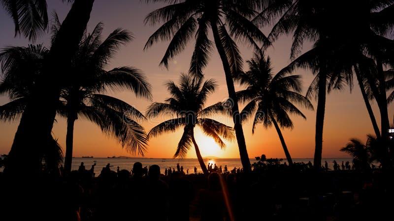 Het landschap van de zonsondergang Strand en zonsonderganghemel Het silhouet van palmen op zonsondergang tropische beach stock fotografie