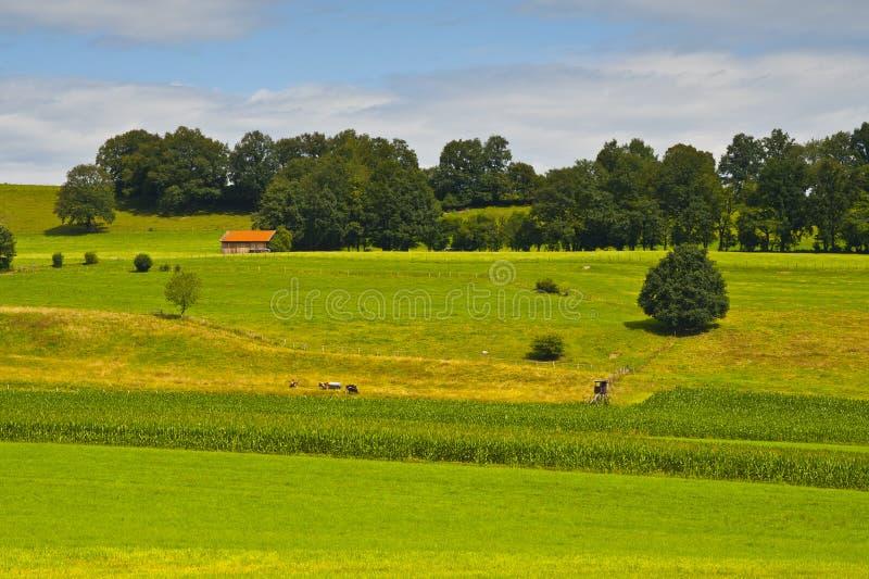 Het Landschap van Duitsland royalty-vrije stock foto's