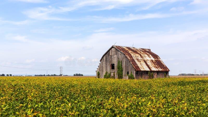 Het landschap van een verlaten schuur stock afbeelding