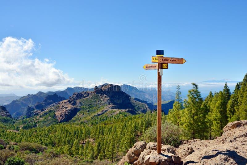 Het landschap van Gran Canaria stock foto's