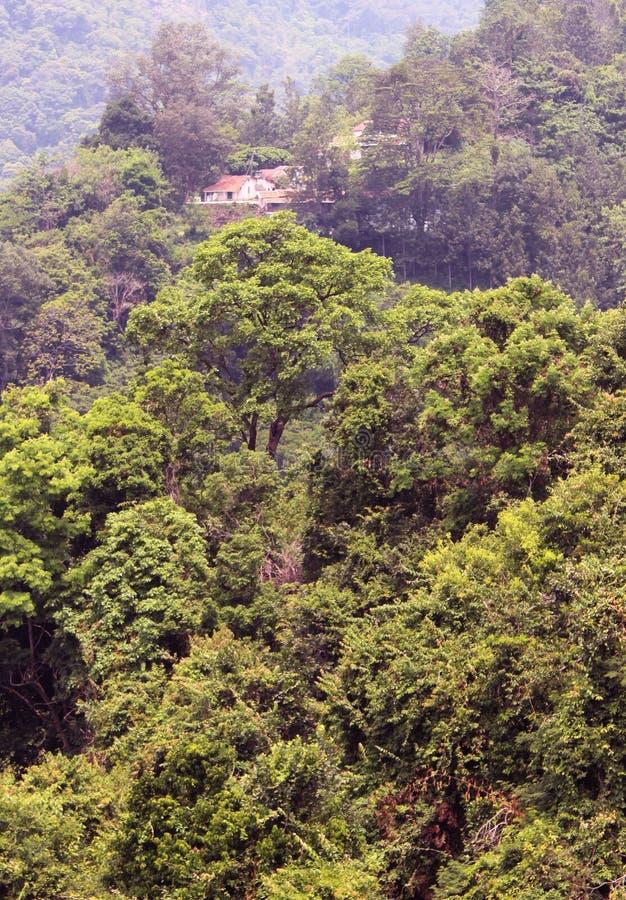 Het landschap van het berghuis stock foto's