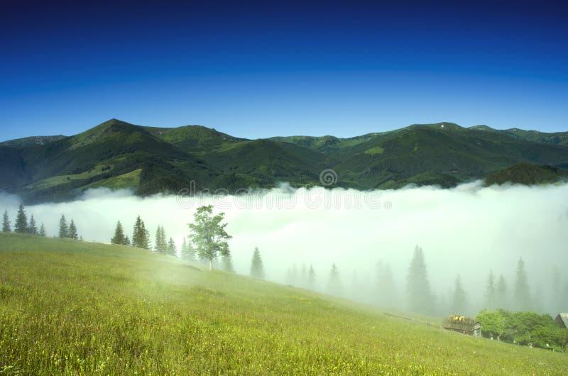 Het landschap van het bergplateau stock foto