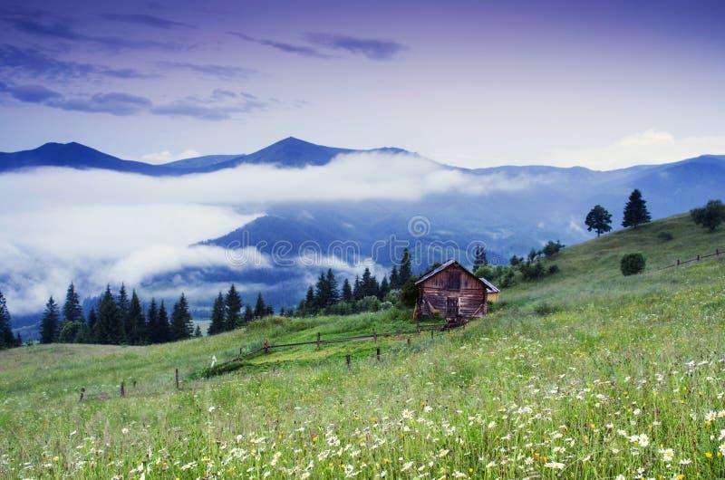 Het landschap van het bergplateau stock foto's