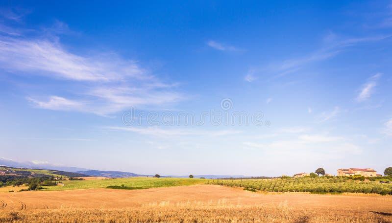 Het landschap van het de zomerland stock afbeelding