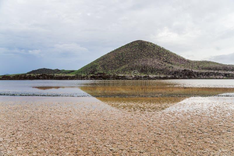 Het landschap van het Floreanaeiland in de Galapagos stock foto