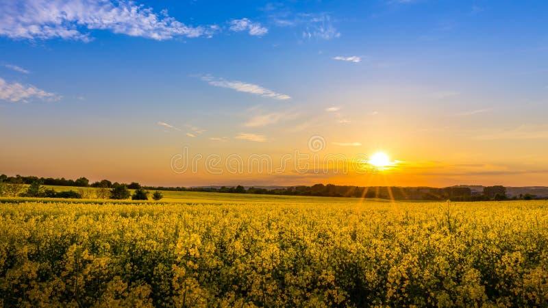 Het landschap van het land stock afbeeldingen