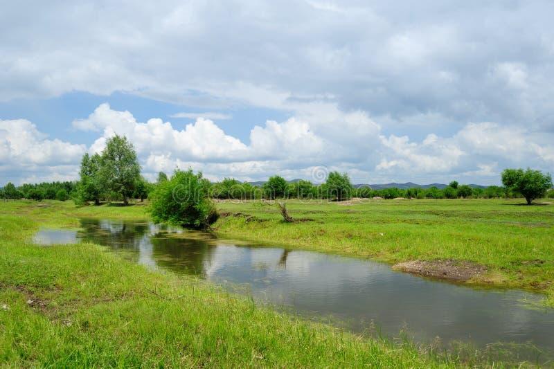 Het landschap van het moerasland royalty-vrije stock afbeeldingen