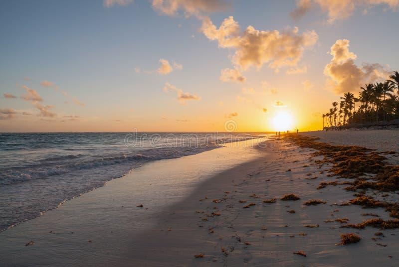 Het landschap van het ochtendstrand, Hispaniola, Dominicaanse republiek stock foto