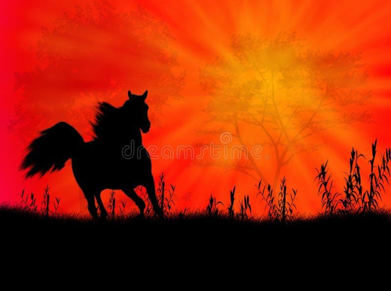Het landschap van het paard