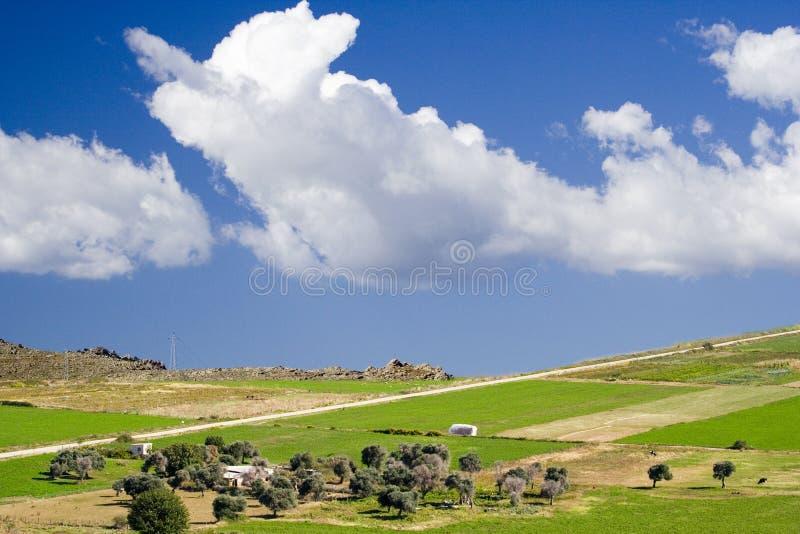 Het landschap van het panorama. stock fotografie