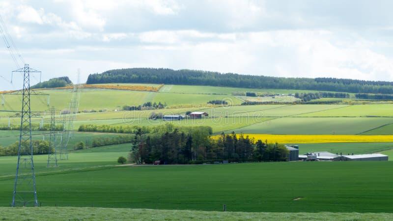 Het Landschap van het plattelandslandbouwbedrijf royalty-vrije stock afbeeldingen