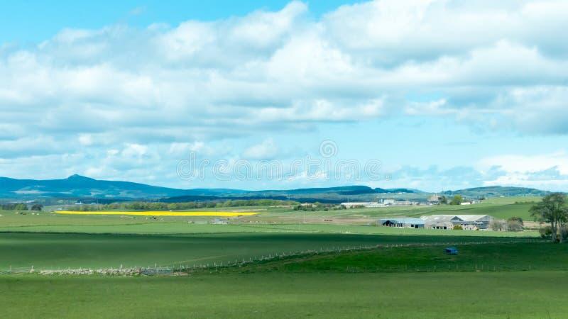 Het Landschap van het plattelandslandbouwbedrijf royalty-vrije stock foto's