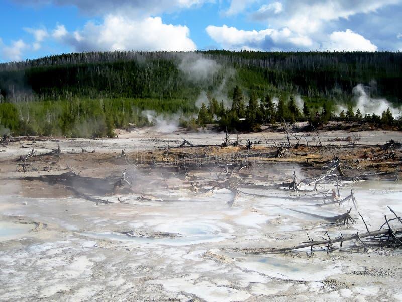 Het landschap van het porseleinbassin royalty-vrije stock foto
