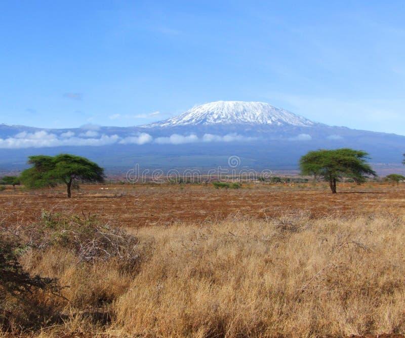Het landschap van Kilimanjaro royalty-vrije stock foto