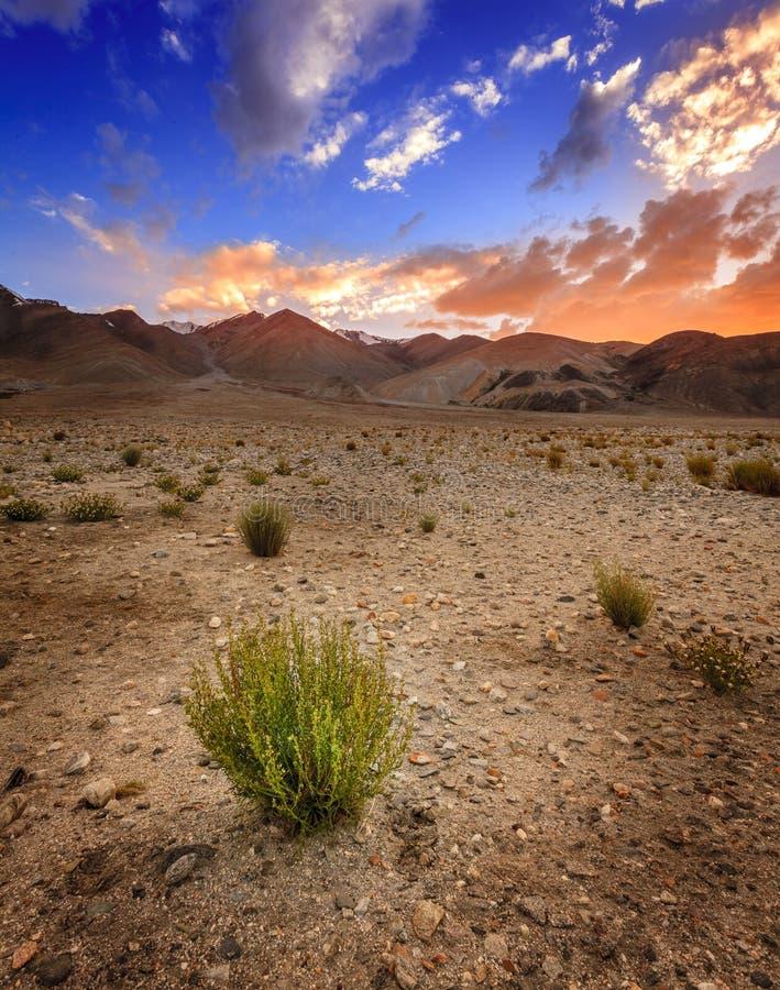 Het Landschap van Ladakh stock foto