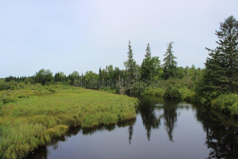 Het Landschap van New Brunswick royalty-vrije stock foto