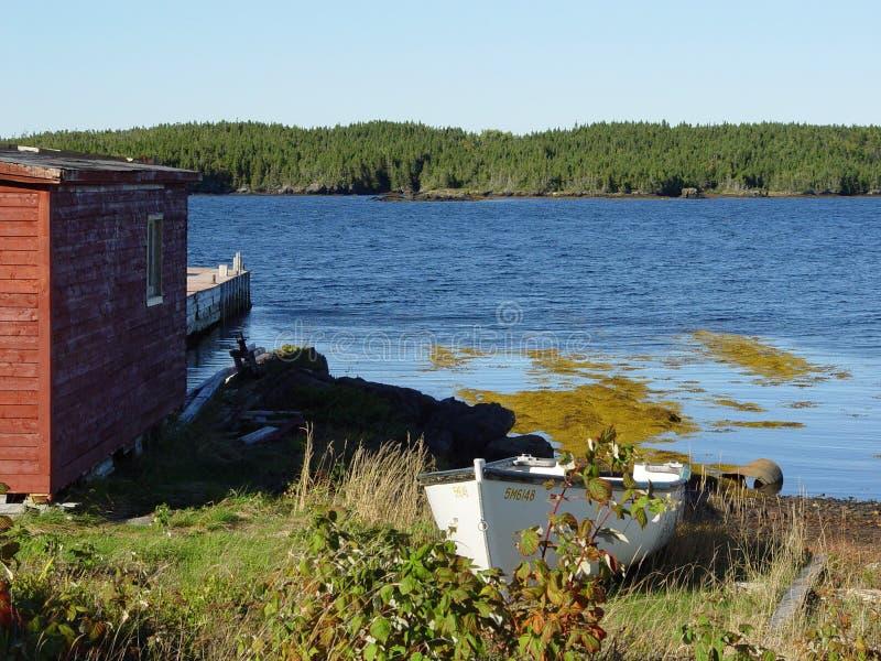 Het Landschap van Newfoundland stock fotografie