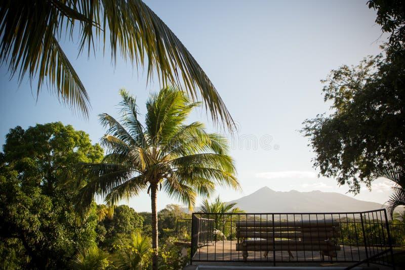 Het Landschap van Nicaragua met Palmen en Vulkaan stock fotografie