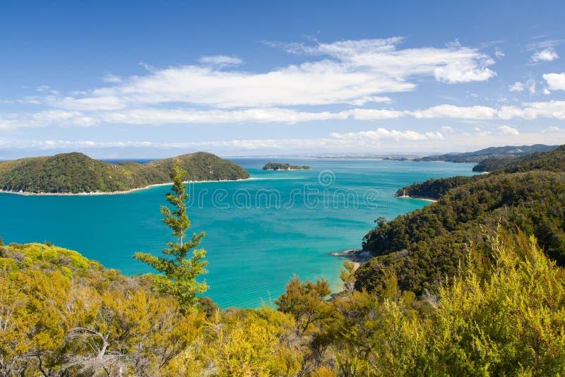 Het Landschap van Nieuw Zeeland. Abel Tasman National Park stock foto's