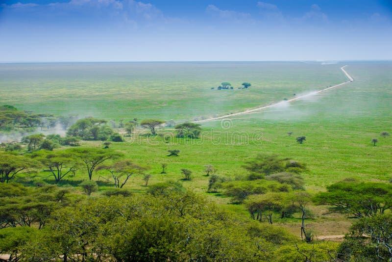 Het landschap van Serengeti royalty-vrije stock foto