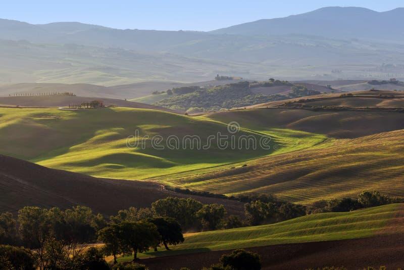 Het landschap van Toscanië bij zonsopgang Toscaans landbouwbedrijfhuis, wijngaard, groene heuvels stock afbeelding